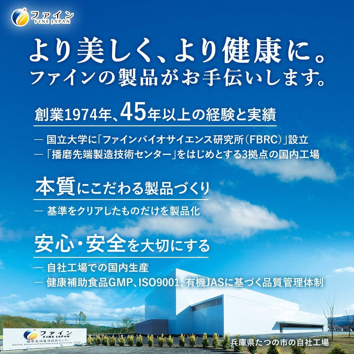 FINE(ファイン) AYA'sセレクション プロテイン ダイエット スムージーの商品画像7