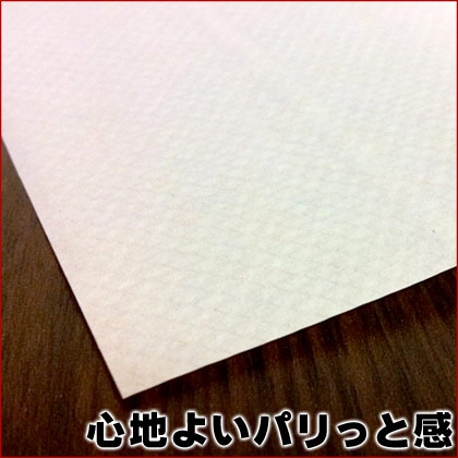 e-KOA(エコア) ペーパータオル 200枚 60パック(30パック×2ケース)の商品画像5