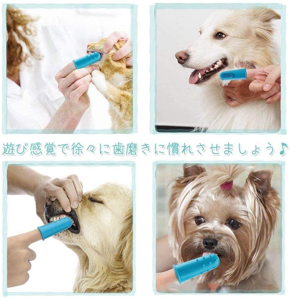 KIMINO ペット用歯ブラシの商品画像4