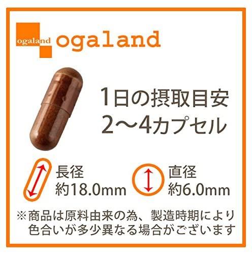 ogaland(オーガランド) セントジョーンズワートの商品画像2