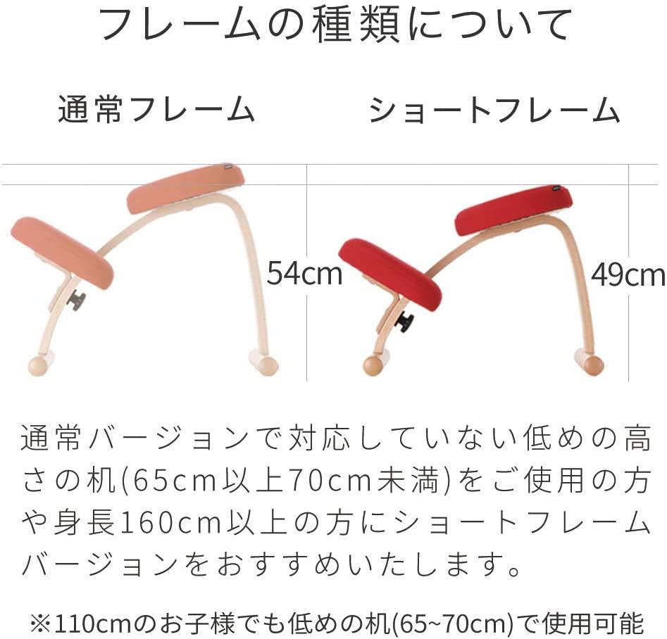 Sakamoto house(サカモトハウス) バランスチェア・イージーの商品画像7