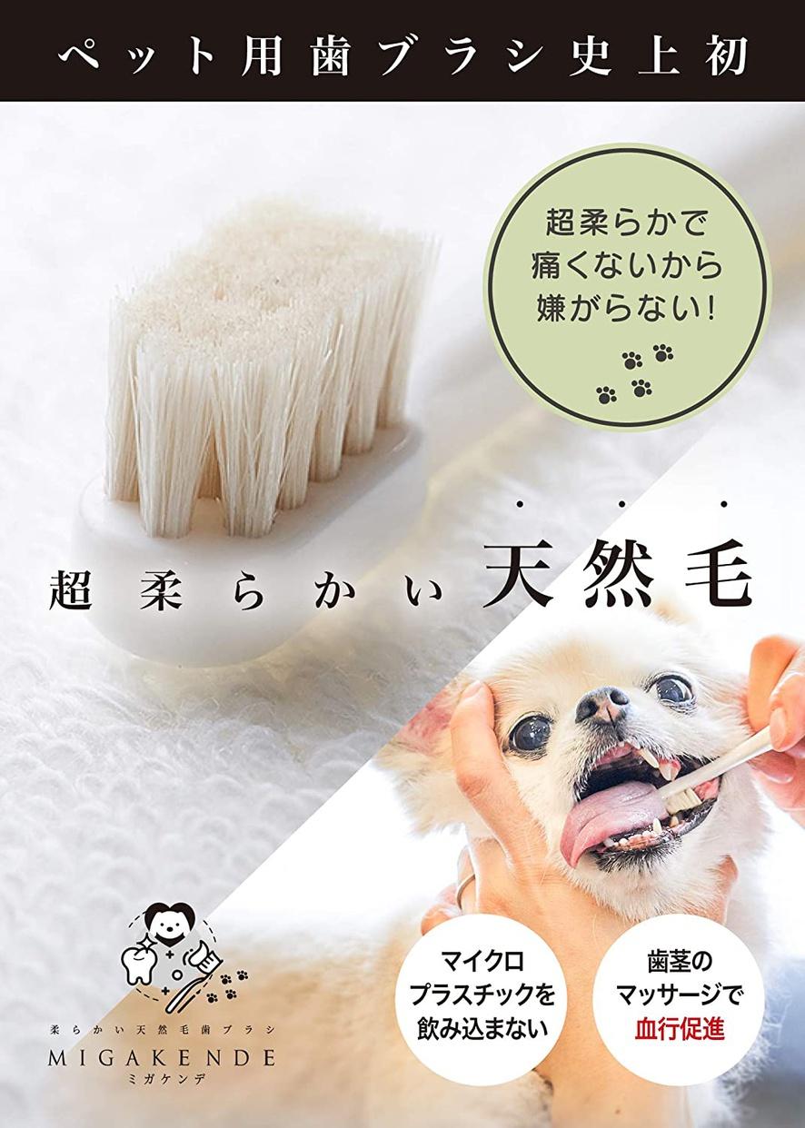 MIGAKENDE(ミガケンデ) 柔らかい天然毛歯ブラシの商品画像3