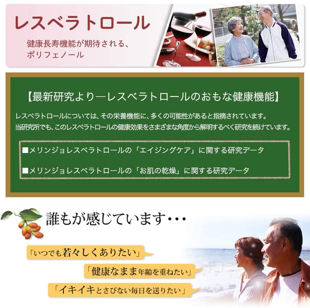 山田養蜂場(YAMADA BEE FARM) レスベラトロール プラスの商品画像5