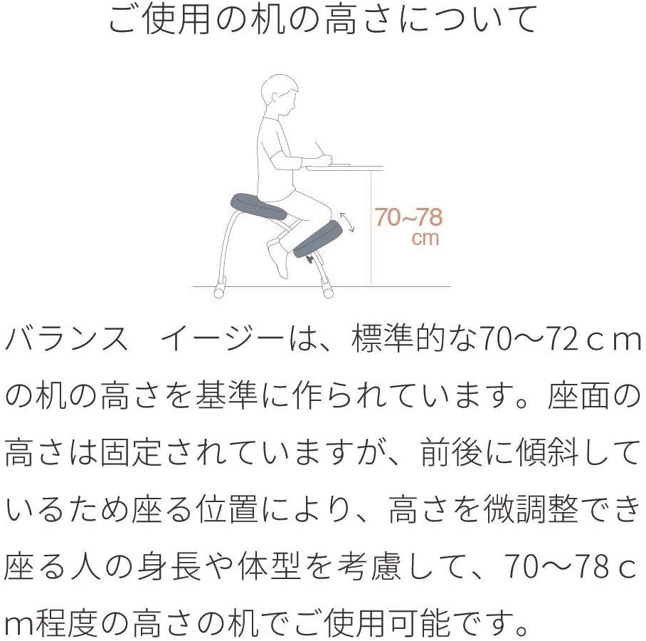 Sakamoto house(サカモトハウス) バランスチェア・イージーの商品画像8