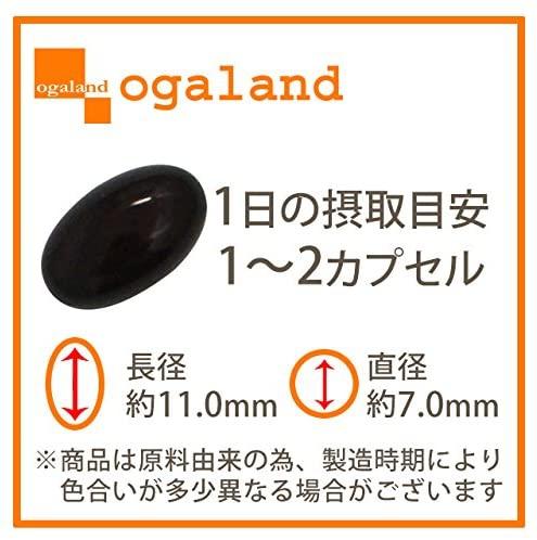 ogaland(オーガランド) コエンザイムQ10の商品画像2