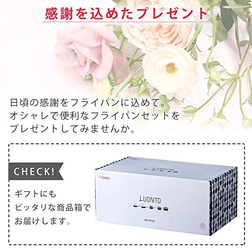 LUONTO(ルオント) フライパン・なべ10点セット LUO-SE10の商品画像6