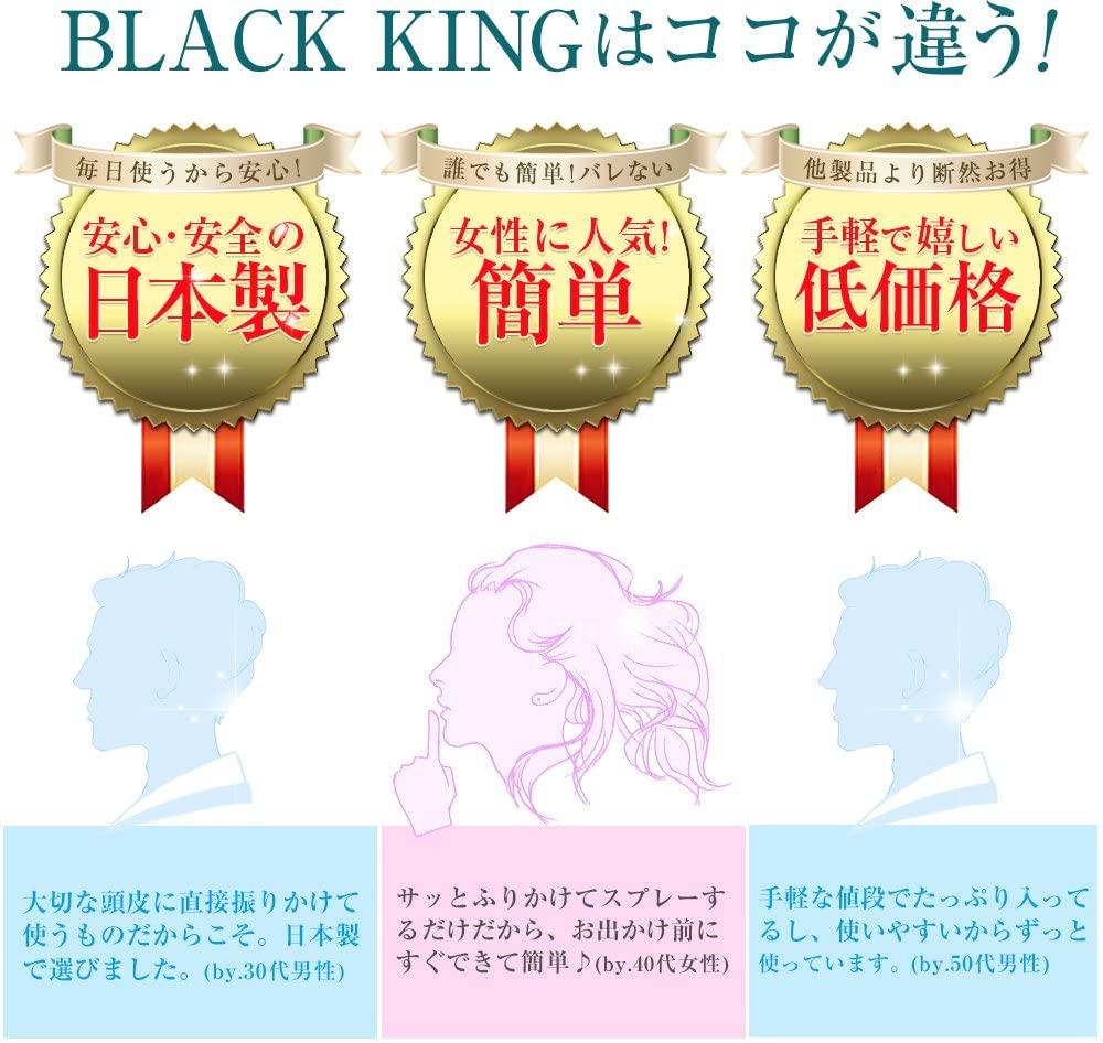 BLACK KING(ブラックキング) BLACK KING ボリュームアップヘアパウダーの商品画像4