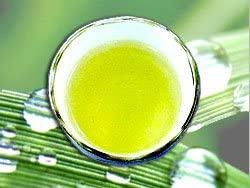 森のこかげ スギナ茶の商品画像3