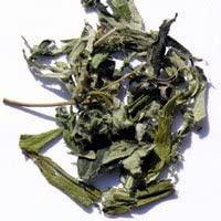 森のこかげ よもぎ茶の商品画像2