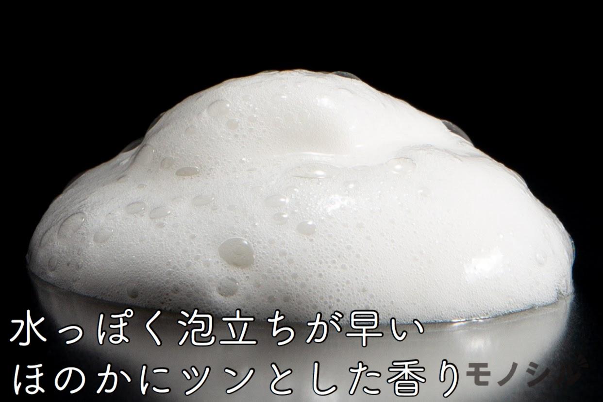AVISTA(アビスタ) エイジングケアシャンプーの商品画像4 商品の泡立ち