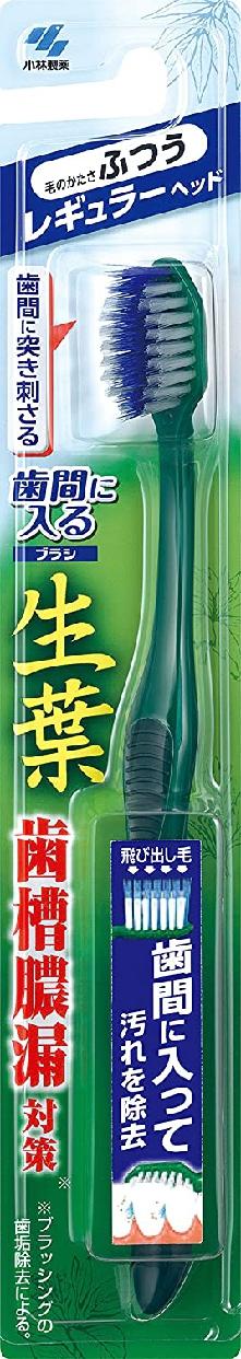 生葉(しょうよう)歯間に入るブラシ レギュラーヘッドの商品画像