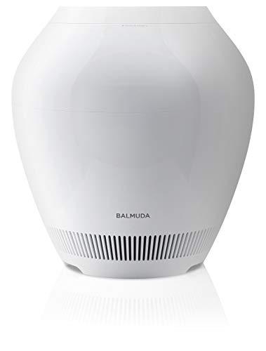 BALMUDA(バルミューダ) レイン ERN-1100UAの商品画像
