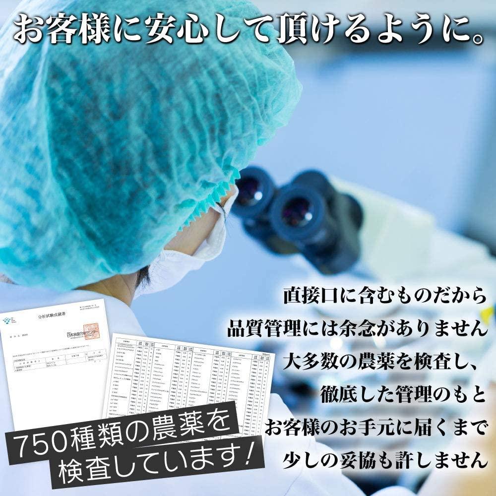 野草酵素 ダイエットサプリ ギュッと酵素粒の商品画像7