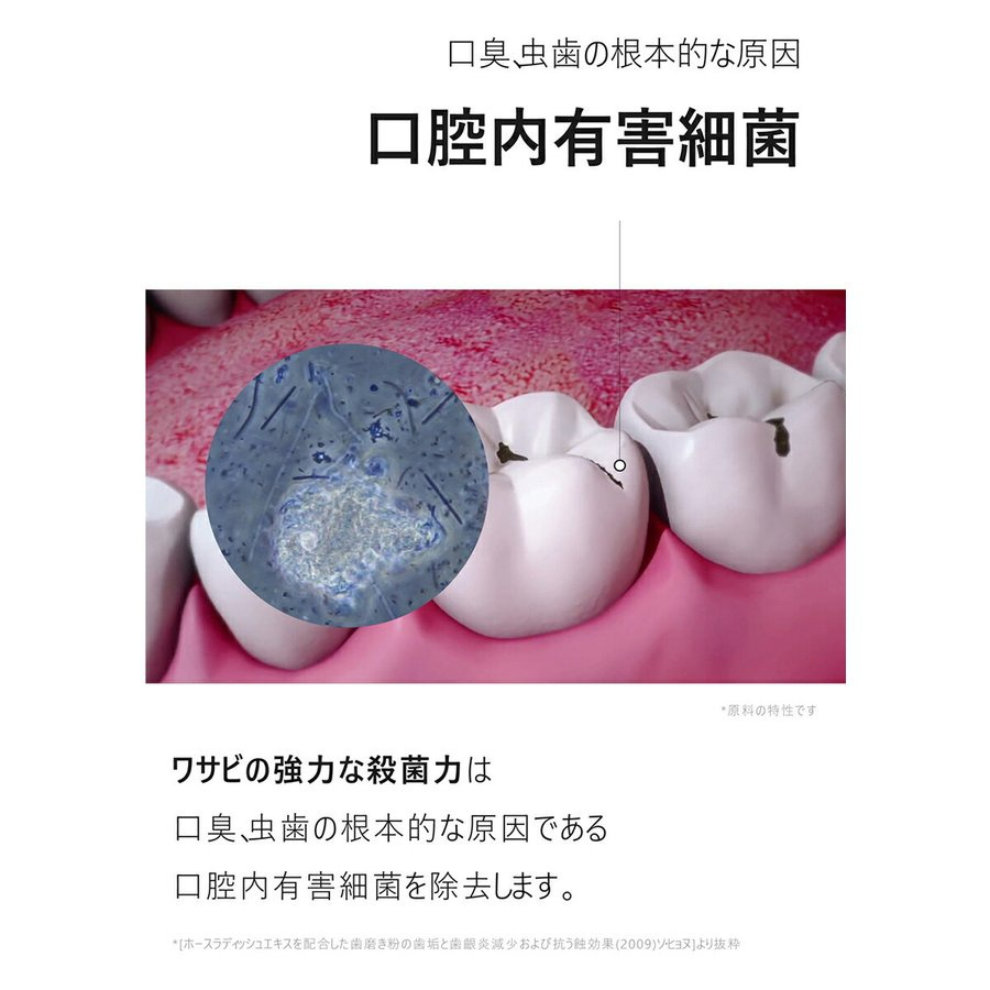 RoRobell(ロロベル) ワワ歯磨き粉の商品画像5