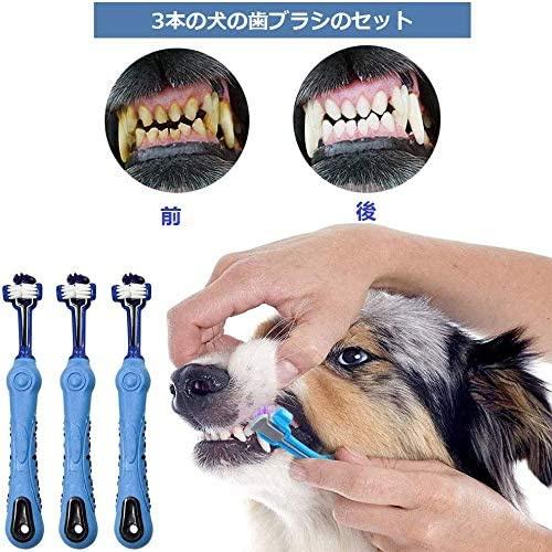 BarleyCorn(バーリーコーン) 歯ブラシ 3面ブラシの商品画像2