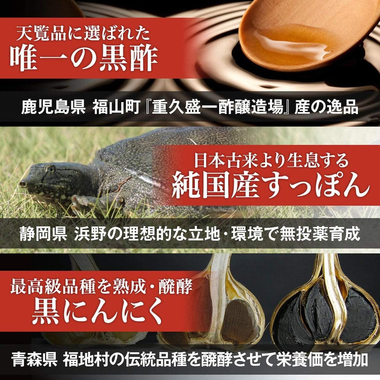プロスポーツ出版(プロスポーツシュッパン) 国産 命のすっぽん黒酢の商品画像9