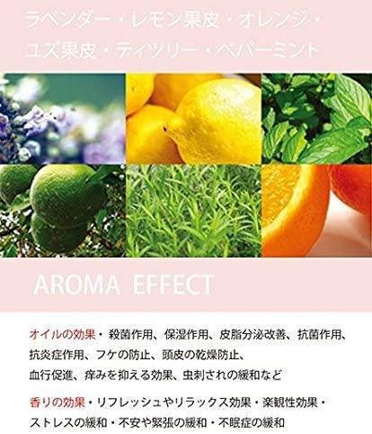 Beauty Sustainability(ビューティーサステナビリティー)使いやすいジェルタイプのオーガニックドライシャンプー ANの商品画像6