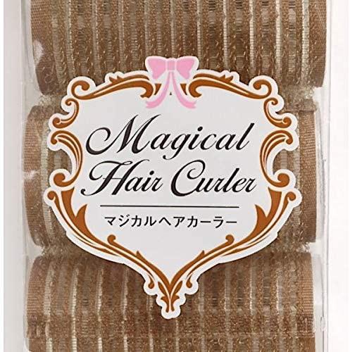 seiwa pro(セイワプロ) マジカルヘアカーラーの商品画像8