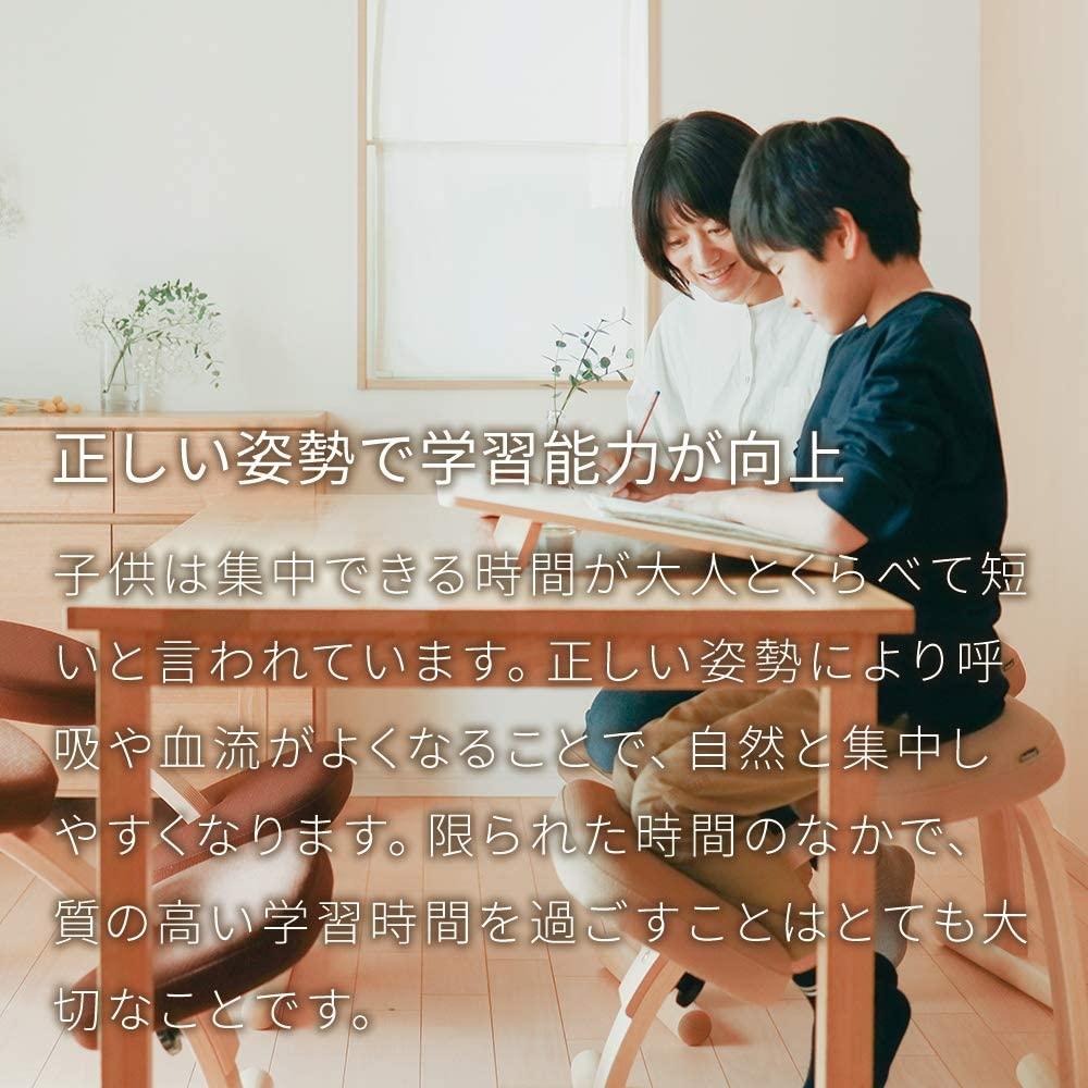 Sakamoto house(サカモトハウス) バランスチェア・イージーの商品画像5