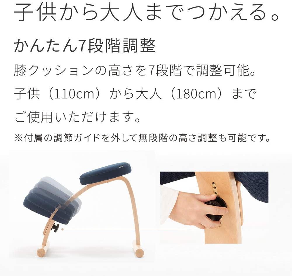 Sakamoto house(サカモトハウス) バランスチェア・イージーの商品画像6