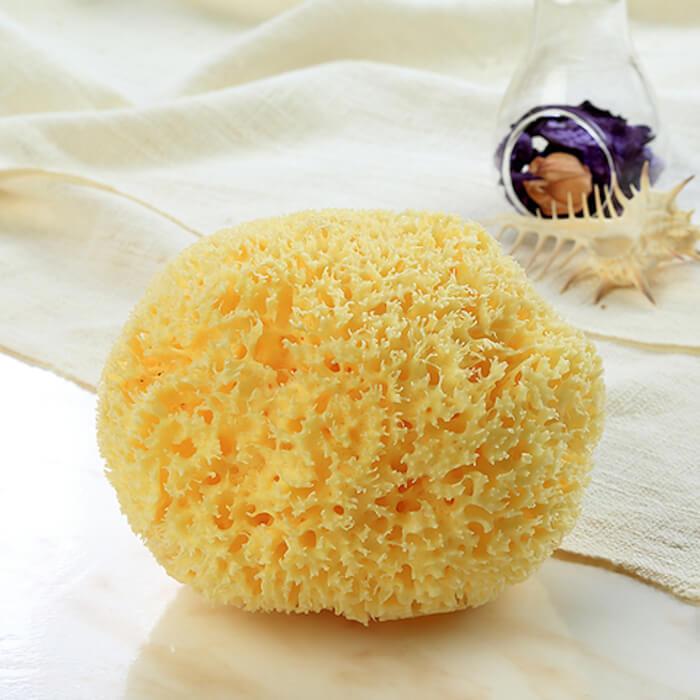 海綿屋(かいめんや)天然海綿スポンジの商品画像