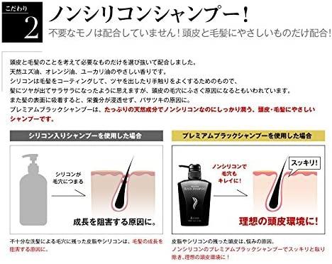 &GINO(アンドジーノ)頭皮ケア プレミアムブラックシャンプーの商品画像13