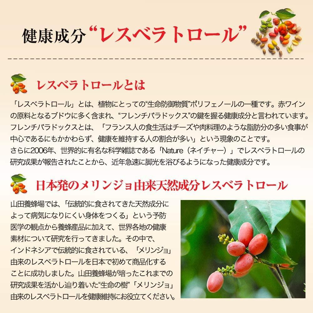 山田養蜂場(YAMADA BEE FARM) レスベラトロール プラスの商品画像4