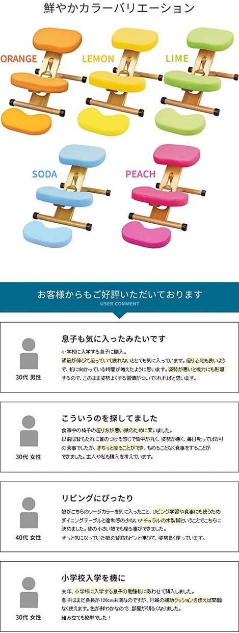 MIYATAKE(ミヤタケ) プロポーションチェアキッズ CH-889CKの商品画像5