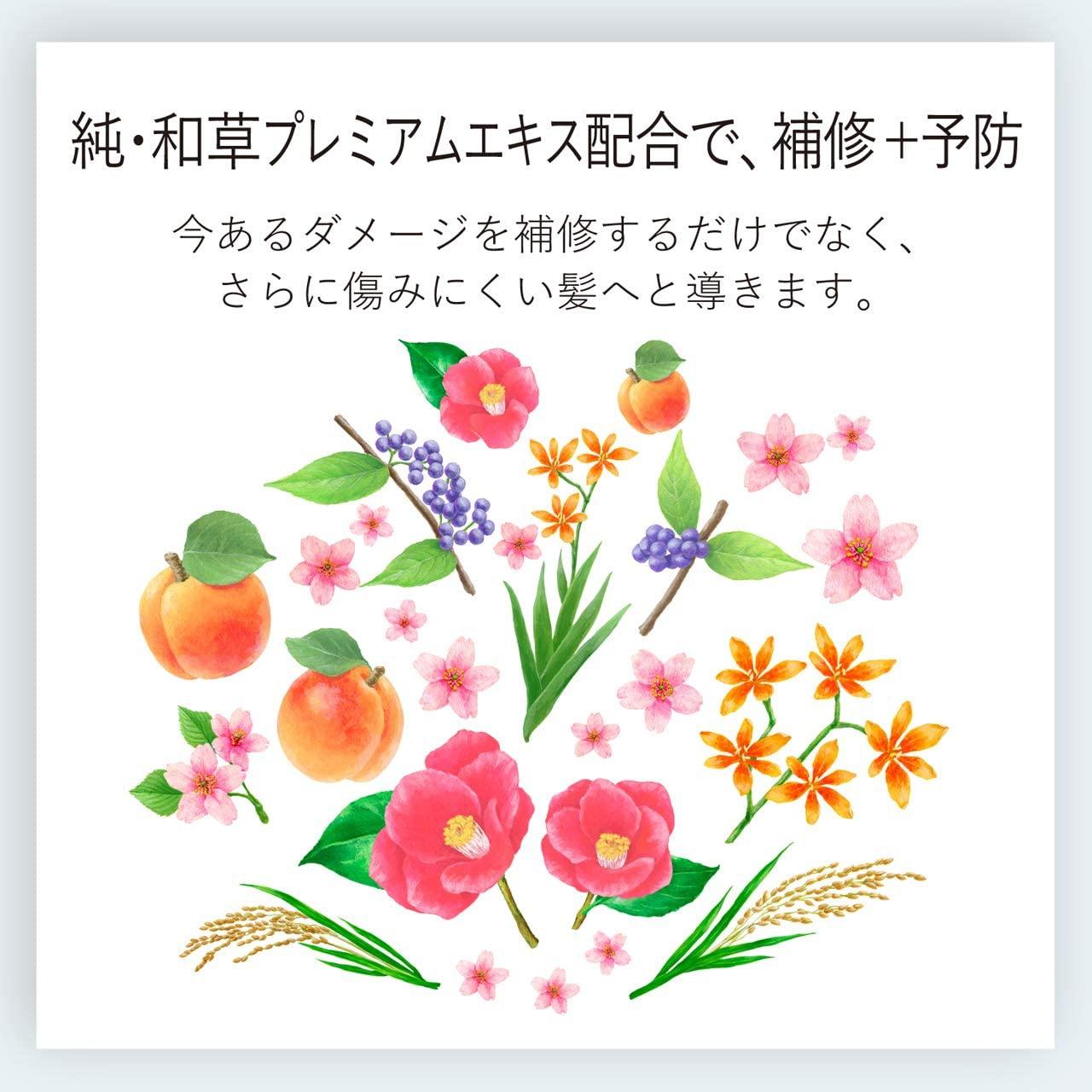 いち髪(ICHIKAMI) なめらかスムースケア トリートメントの商品画像9