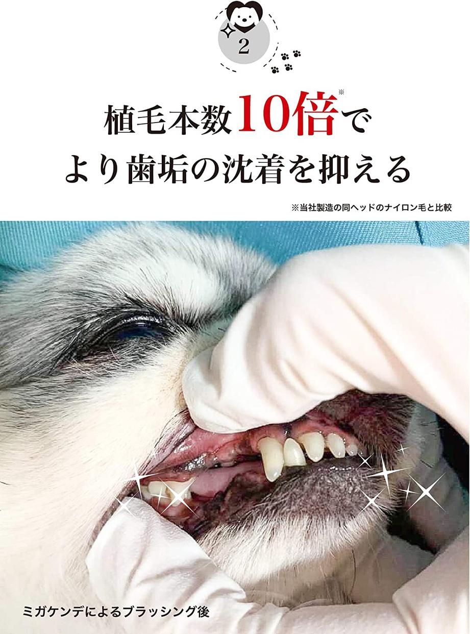 MIGAKENDE(ミガケンデ) 柔らかい天然毛歯ブラシの商品画像5