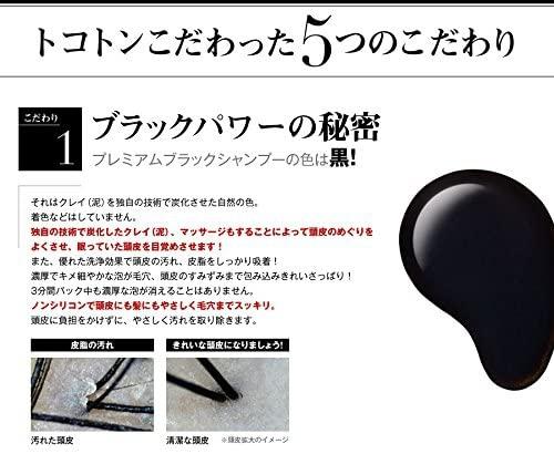 &GINO(アンドジーノ)頭皮ケア プレミアムブラックシャンプーの商品画像12