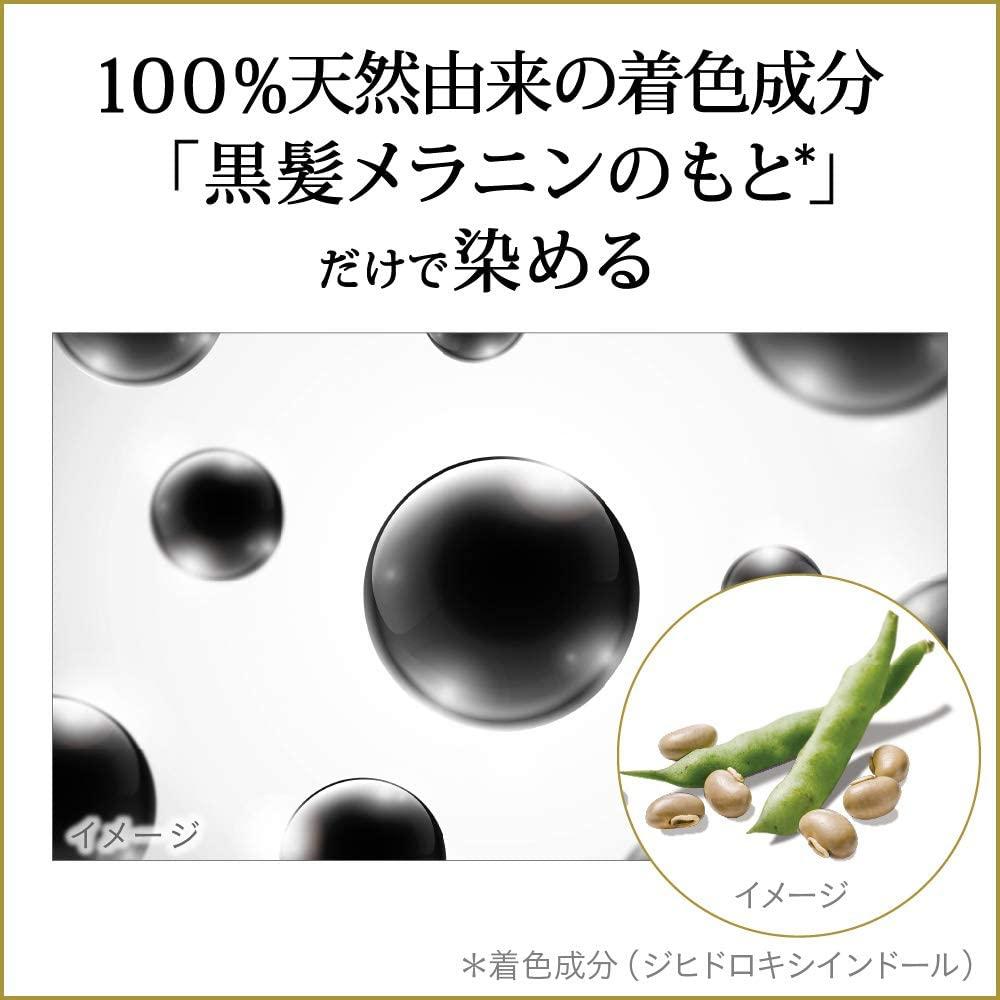 Rerise(リライズ) 白髪用髪色サーバー ふんわり仕上げの商品画像3