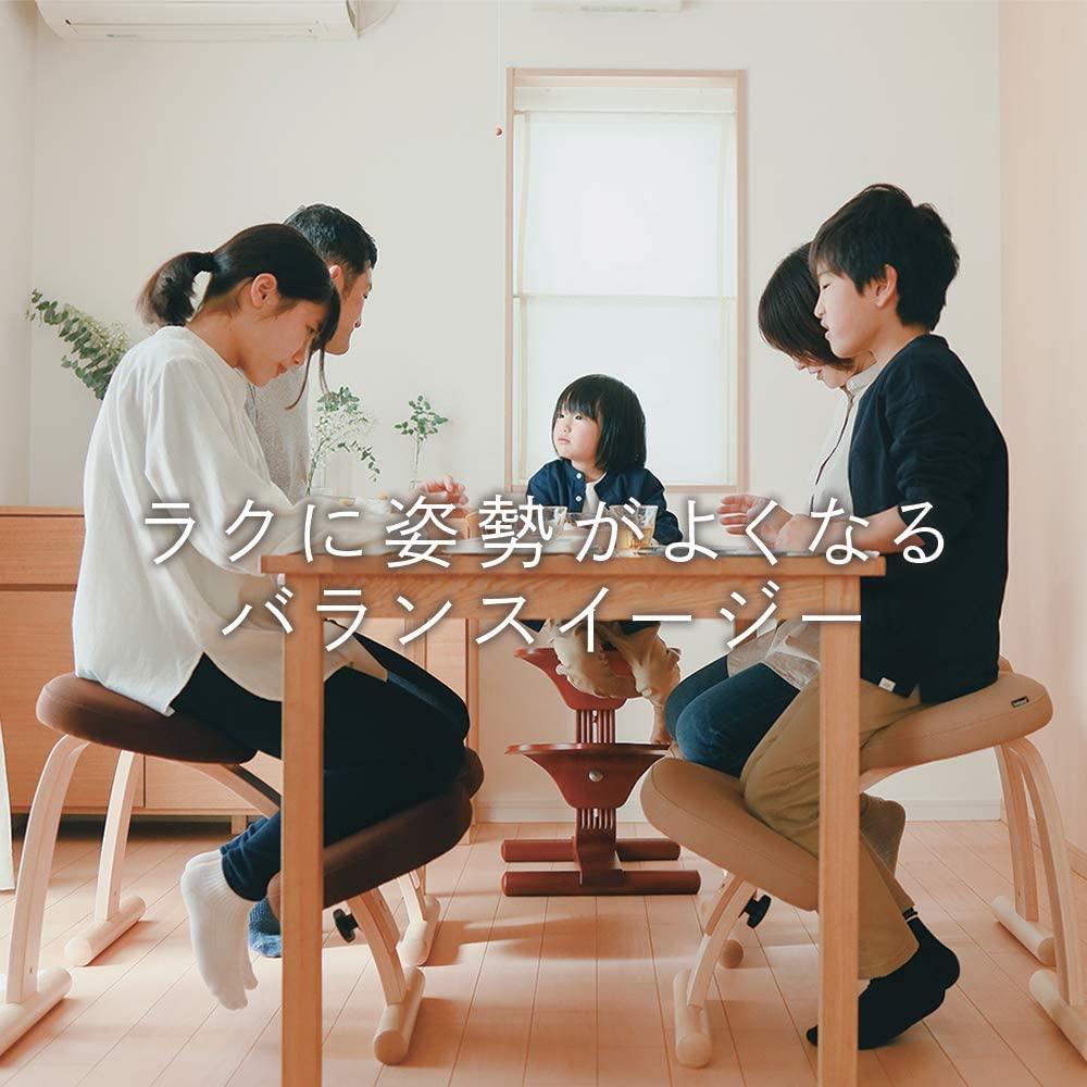 Sakamoto house(サカモトハウス) バランスチェア・イージーの商品画像2