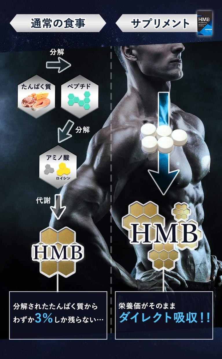 MAGINA(マギナ) HMBの商品画像5