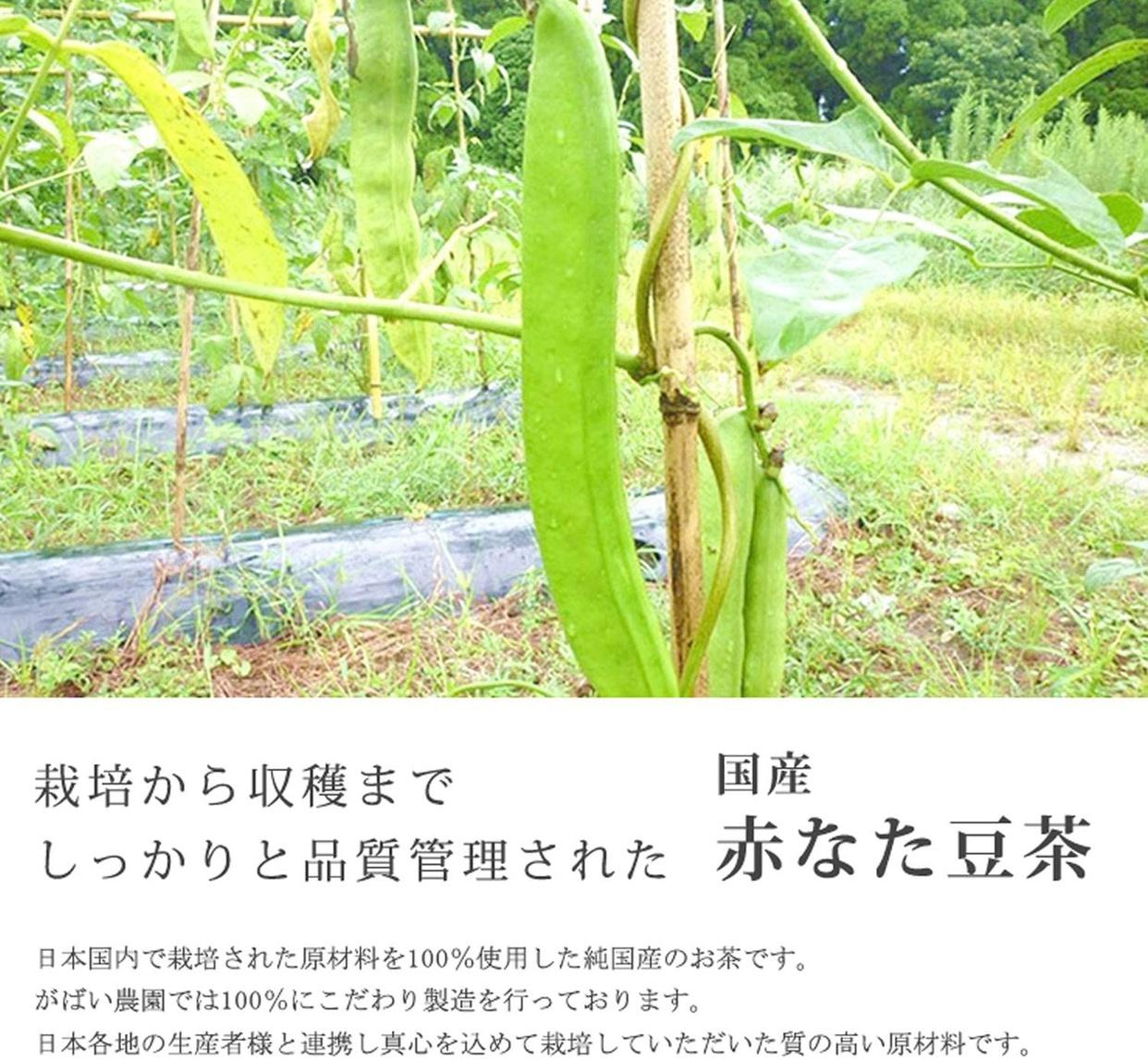がばい農園 国産 赤なた豆茶の商品画像2