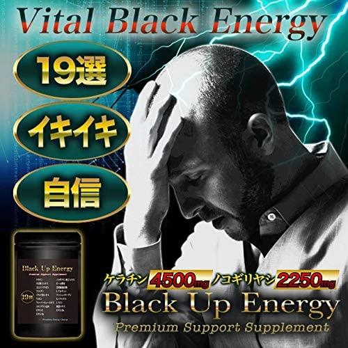 Body Life Change(ボディライフチェンジ) Black Up Energy ノコギリヤシ ケラチン 髪 サプリメント 男性 厳選19素材 30日分の商品画像2