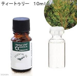 生活の木(セイカツノキ)ティートゥリー精油/Tee treeの商品画像