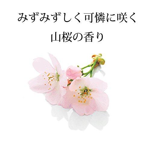 いち髪(ICHIKAMI) いち髪 なめらかスムースケア シャンプー 詰替用2回分の商品画像7