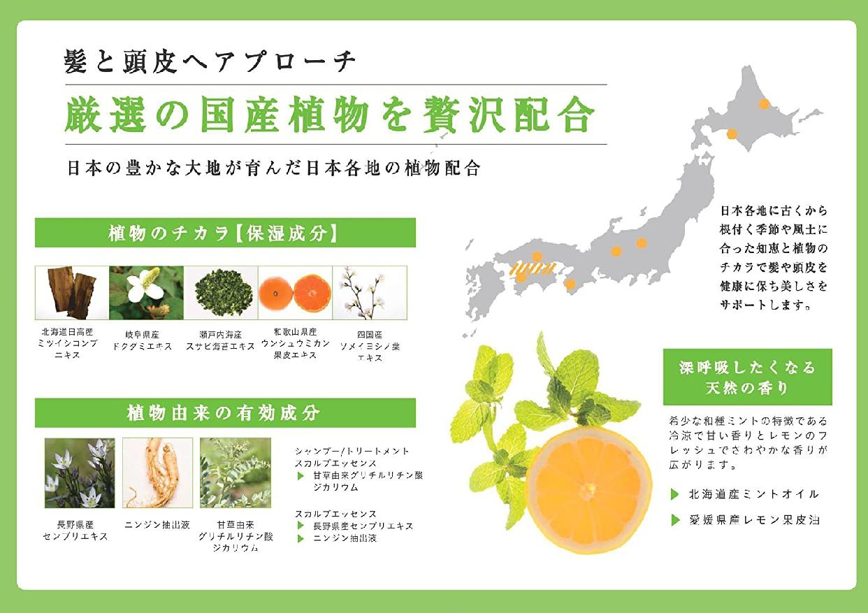 凛恋(リンレン)レメディアル シャンプー ミント&レモンの商品画像14