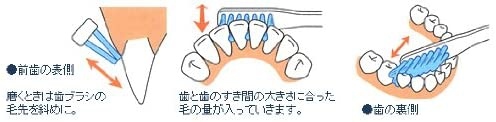 V7(コンパクトヘッド)コンパクトヘッド ふつうの商品画像2