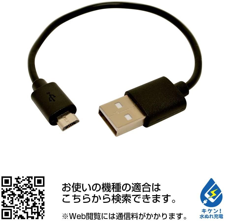 テレホンリース USBモバイルバッテリー テレホンリース RLI040M2A01BKの商品画像3