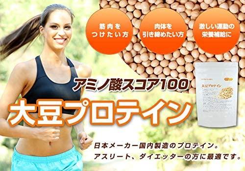 NICHIGA(ニチガ) 大豆プロテイン(国内製造)の商品画像3