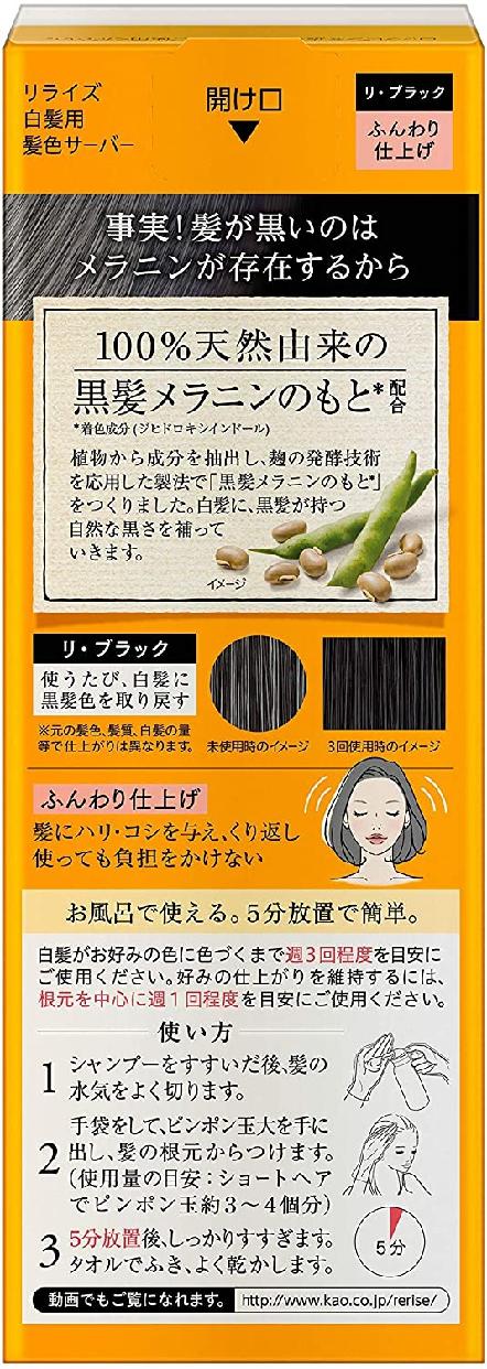 Rerise(リライズ) 白髪用髪色サーバー ふんわり仕上げの商品画像2