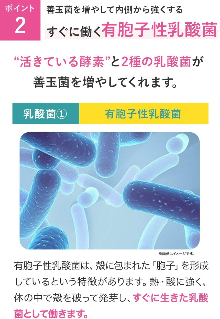 新谷酵素 夜遅いごはんでも W菌活ボディメイクの商品画像6