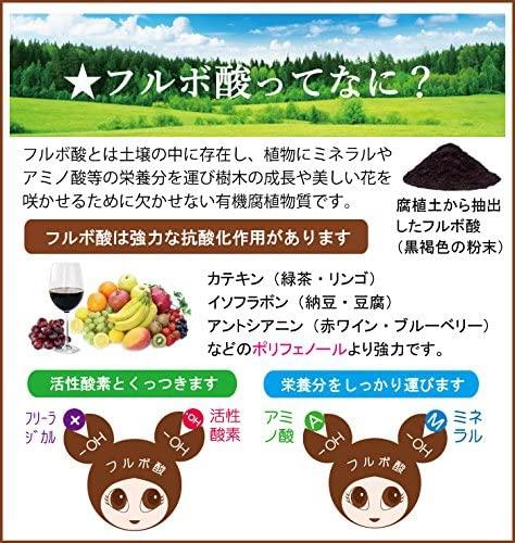フルボ酸 FURURU ボタニカル シャンプーの商品画像4