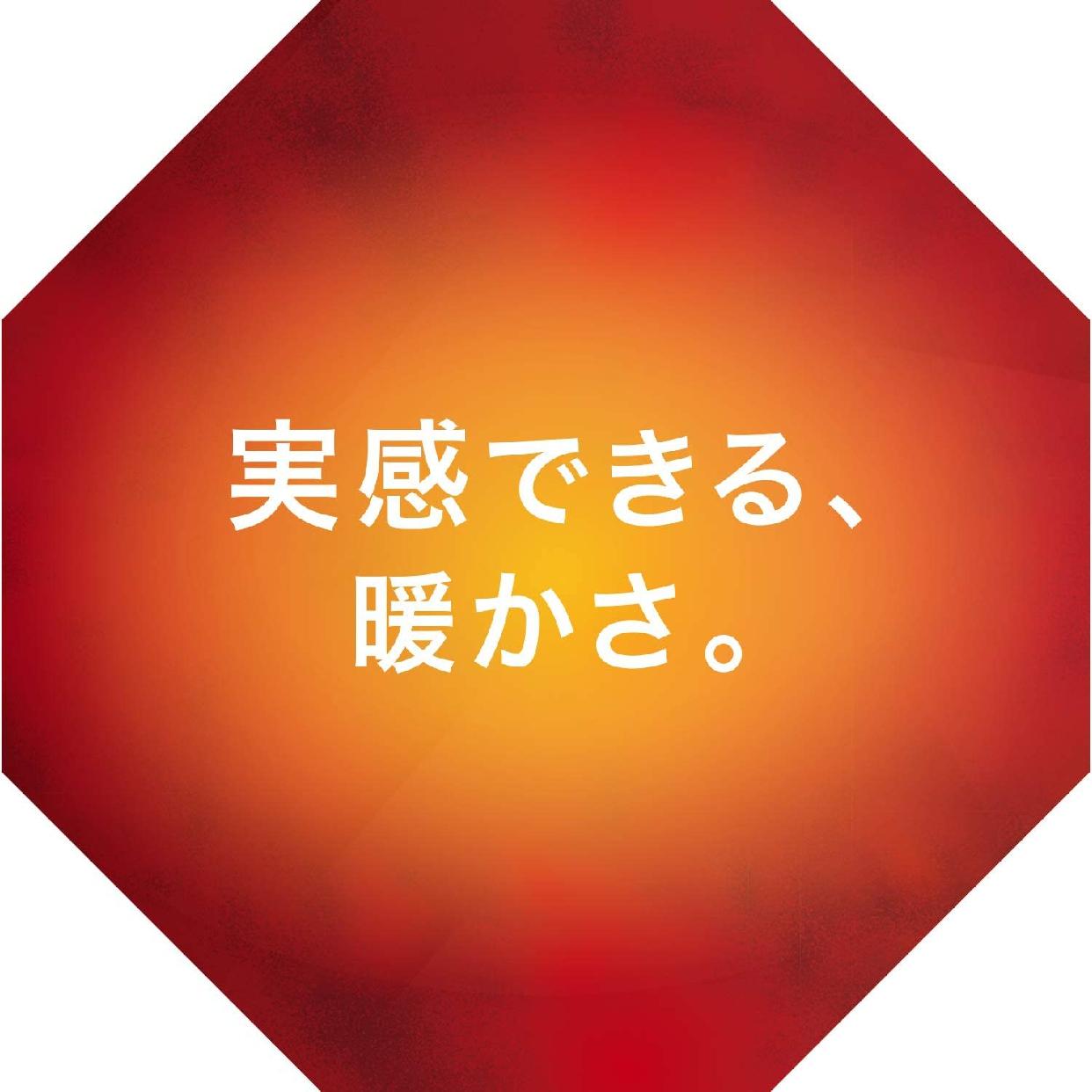 MIZUNO(ミズノ) ルームシューズの商品画像5