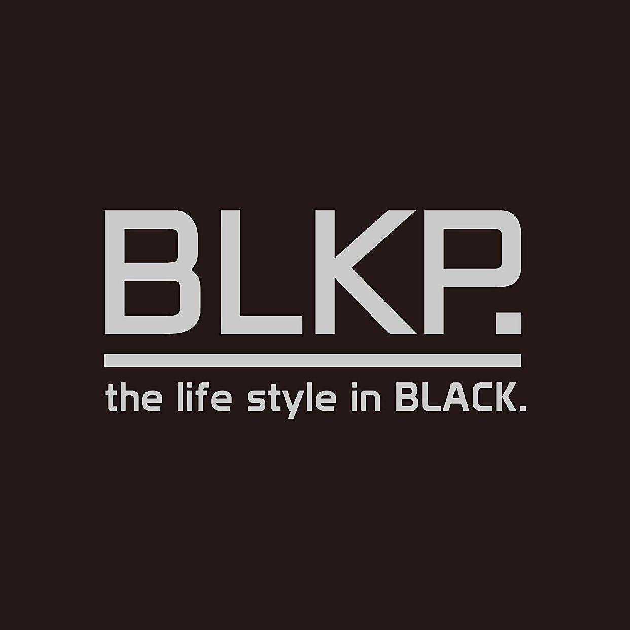 BLKP.(ビーエルケーピー)みじん切り器 大 スーパー スピード 限定 ブラック AZ-5087の商品画像2