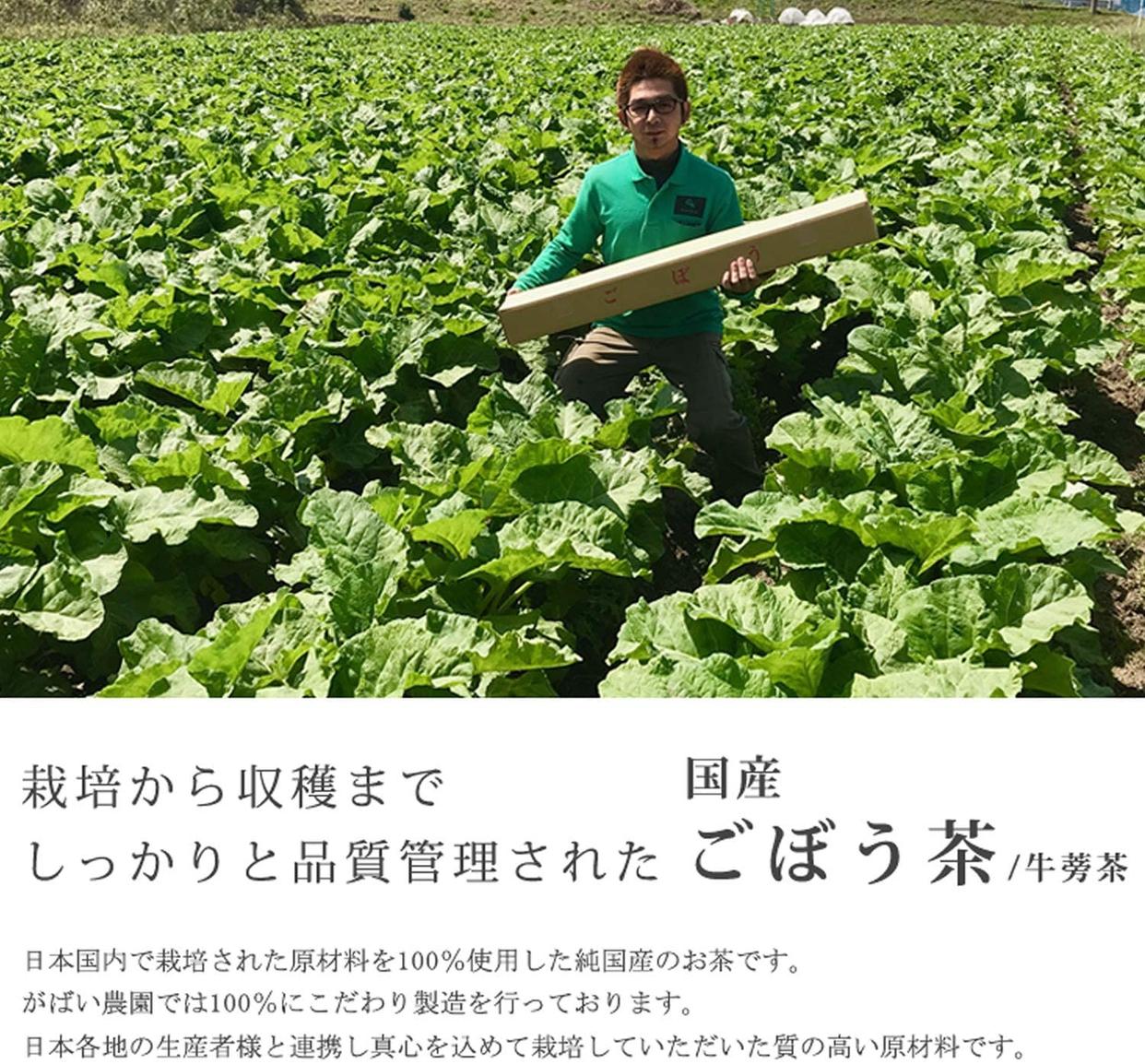 がばい農園 国産手作り ごぼう茶の商品画像2