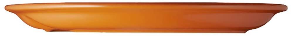 LE CREUSET(ル・クルーゼ)マルチ・オーバル・プレート (S)オレンジの商品画像3