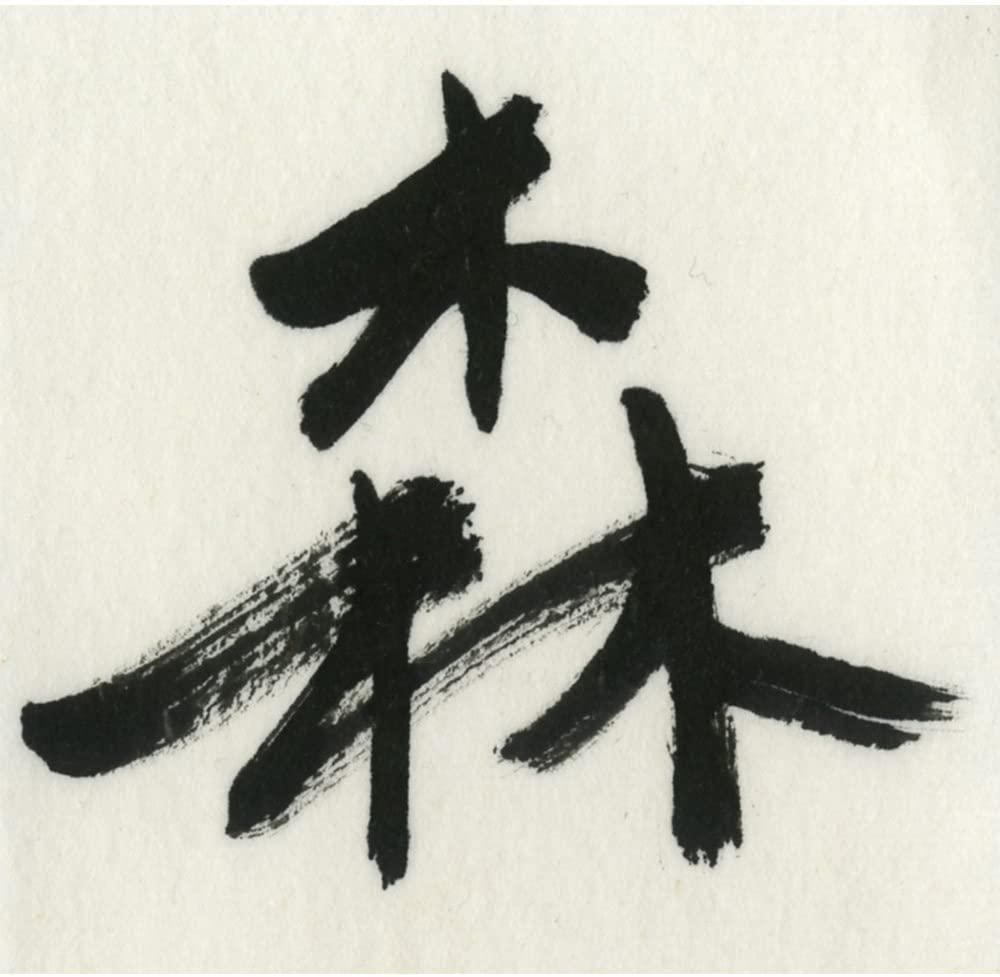 呉竹 森羅万象 BB24-50の商品画像4